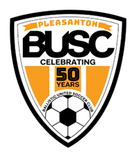 "BUSC 4"" STICKER"