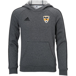 BUSC 50th ADIDAS GREY CORE 18 HOODY Image