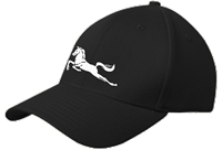 Mavericks Adjustable New Era Cap