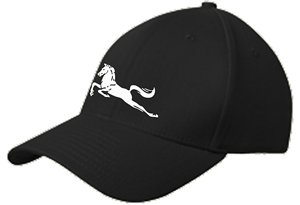 Mavericks New Era Cap Image