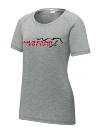 Ladies Tri-Blend Tee Grey