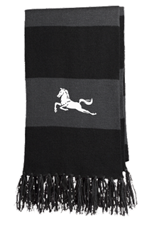 Mavericks Scarf