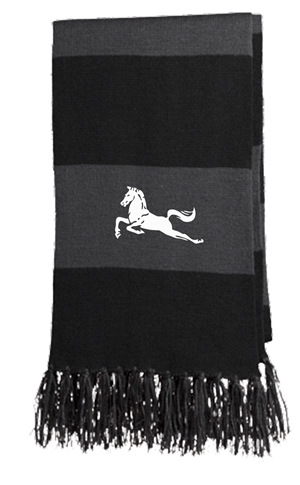 Mavericks Scarf Image